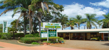 Avocado Motor Inn - Lismore Accommodation