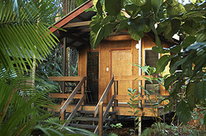 Cape Trib Beach House - Lismore Accommodation