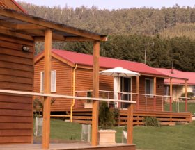 Maydena Country Cabins Accommodation  Alpaca Stud - Lismore Accommodation