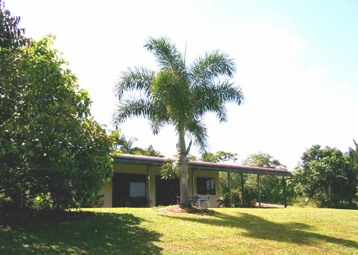 Daintree Mountain View Retreat and Vanilla Beans - Lismore Accommodation