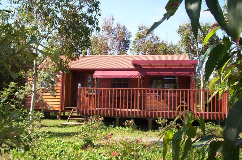 Melaleuca Retreat - Lismore Accommodation