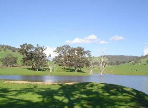 Hillview Farmstay - Lismore Accommodation