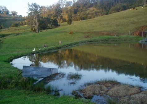 Barkeldine Farm Country Retreat - Lismore Accommodation
