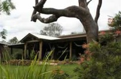 The Hollow Log Country Retreat - Lismore Accommodation