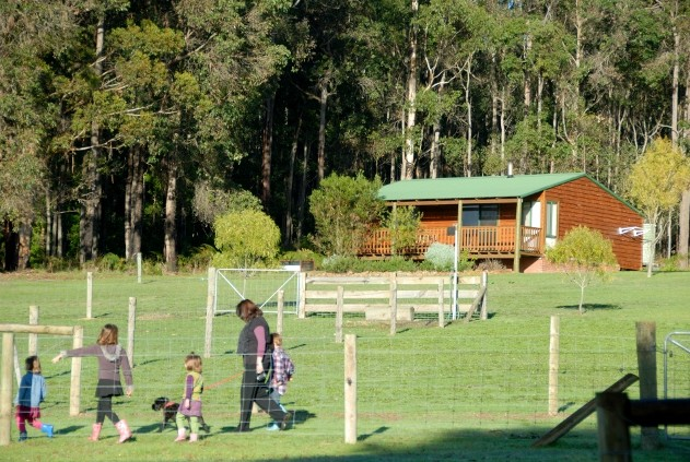 Diamond Forest Farm Stay - Lismore Accommodation