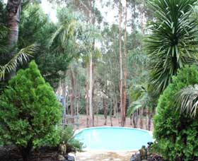 Fern Gulley Retreat - Lismore Accommodation