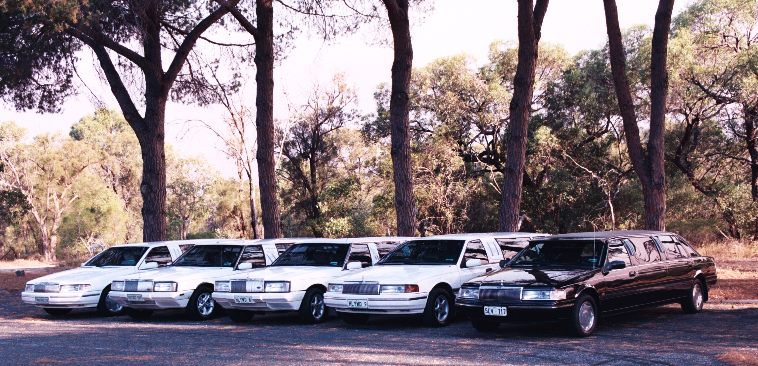 Hollywood VIP Limousines - Lismore Accommodation