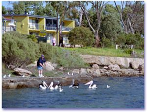 Almonta Holiday Apartments - Lismore Accommodation