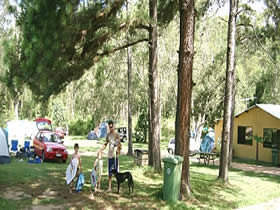 Glasshouse Mountains Holiday Village - Lismore Accommodation