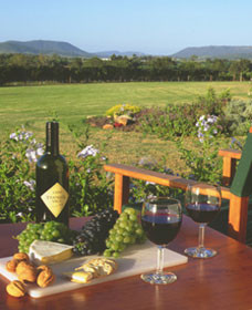 Tranquil Vale Vineyard Cottages - Lismore Accommodation
