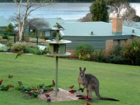 Gipsy Point Lakeside - Lismore Accommodation