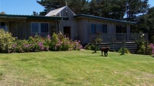 Clifton Beach Lodge - Lismore Accommodation