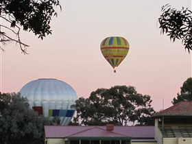Barossa Valley Tourist Park - Lismore Accommodation