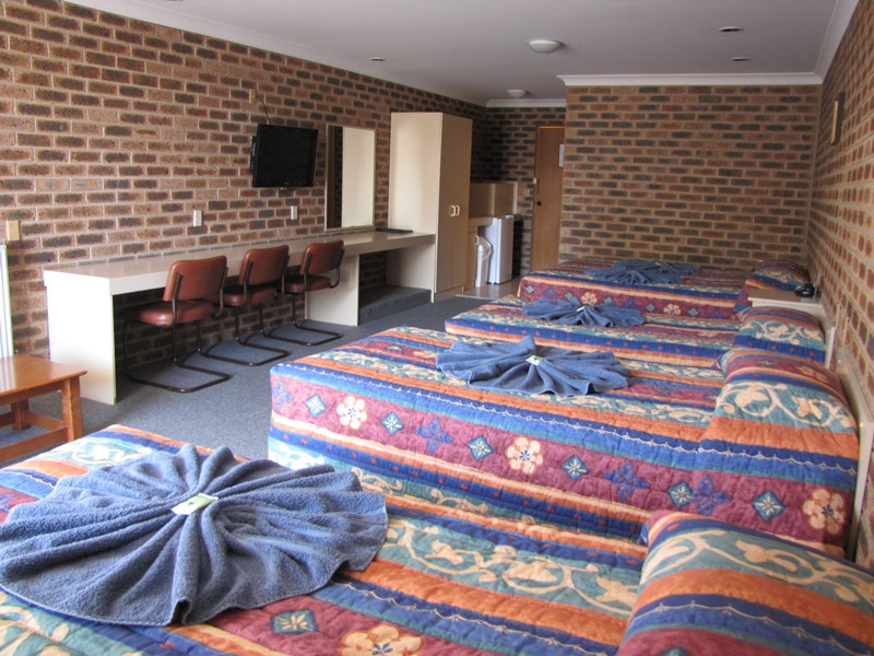 Big Trout Motor Inn - Lismore Accommodation