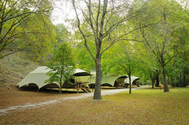 Buchan Caves Reserve - Lismore Accommodation