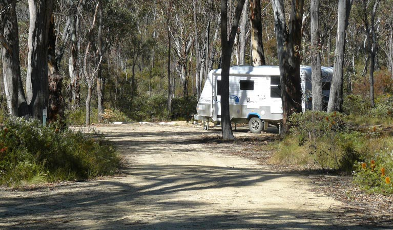 Blatherarm campground and picnic area - Lismore Accommodation