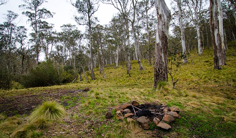 Gummi Falls campground - Lismore Accommodation