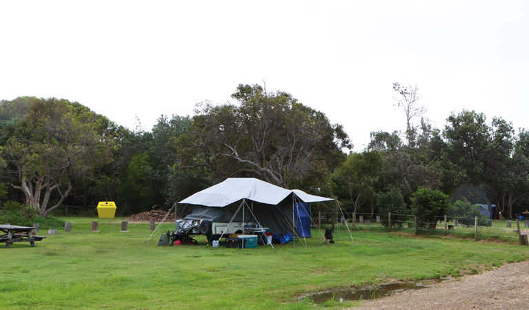Illaroo campground - Lismore Accommodation