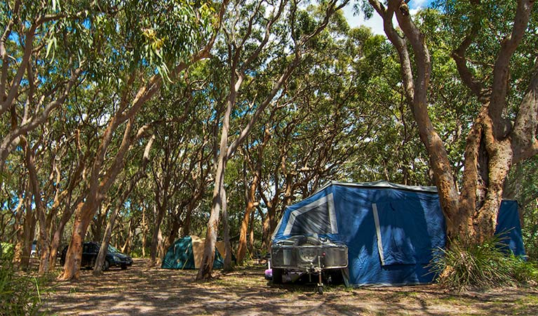 Stewart and Lloyds campground - Lismore Accommodation