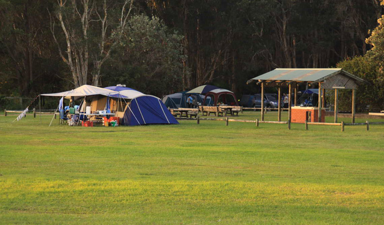 The Ruins campground and picnic area - Lismore Accommodation