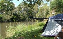 Williams River Holiday Park - Lismore Accommodation