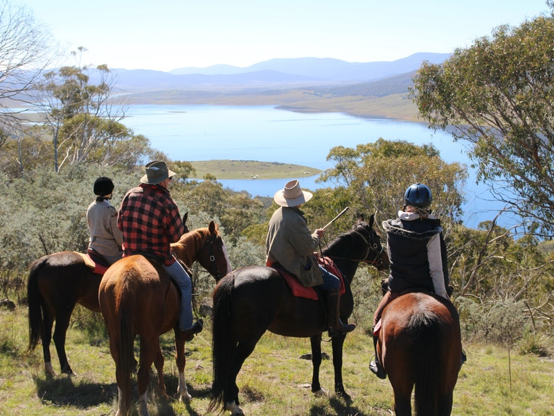 Reynella Homestead and Horseback Rides - Lismore Accommodation