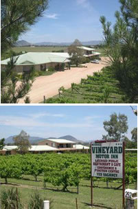 Mudgee Vineyard Motor Inn - Lismore Accommodation