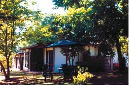 Forest Lodge - Lismore Accommodation