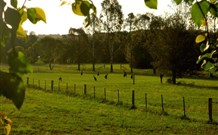 Stone Cottage Mittagong - Lismore Accommodation