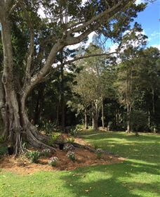 Beechmont Retreat - Lismore Accommodation