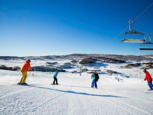 The Coachman Ski Lodge - Lismore Accommodation