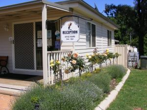 Fossickers' Tourist Park - Lismore Accommodation