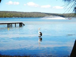 Dungowan Waterfront  Accommodation - Lismore Accommodation