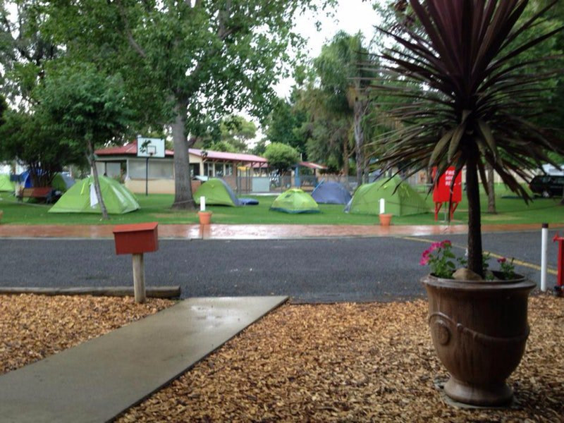Young Caravan Tourist Park - Lismore Accommodation