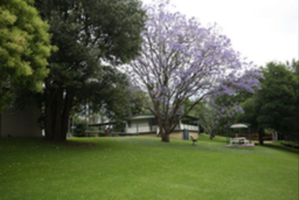 Hawkesbury Riverside Tourist Park - Lismore Accommodation