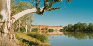 Border Cliffs River Retreat - Lismore Accommodation