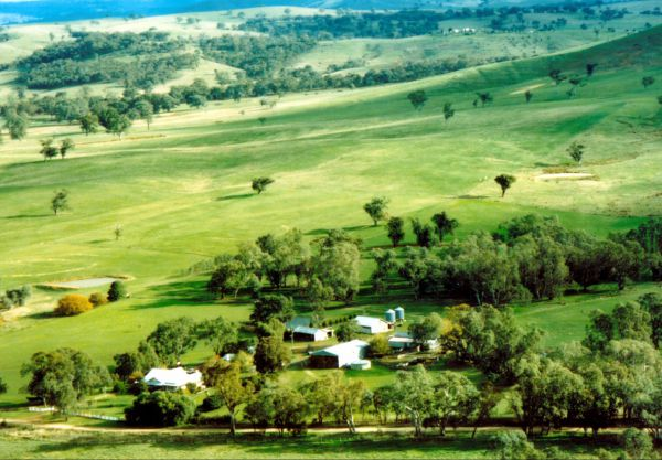 Daisyburn Homestead - Lismore Accommodation
