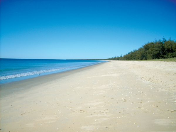 Woodgate Beach Tourist Park - Lismore Accommodation