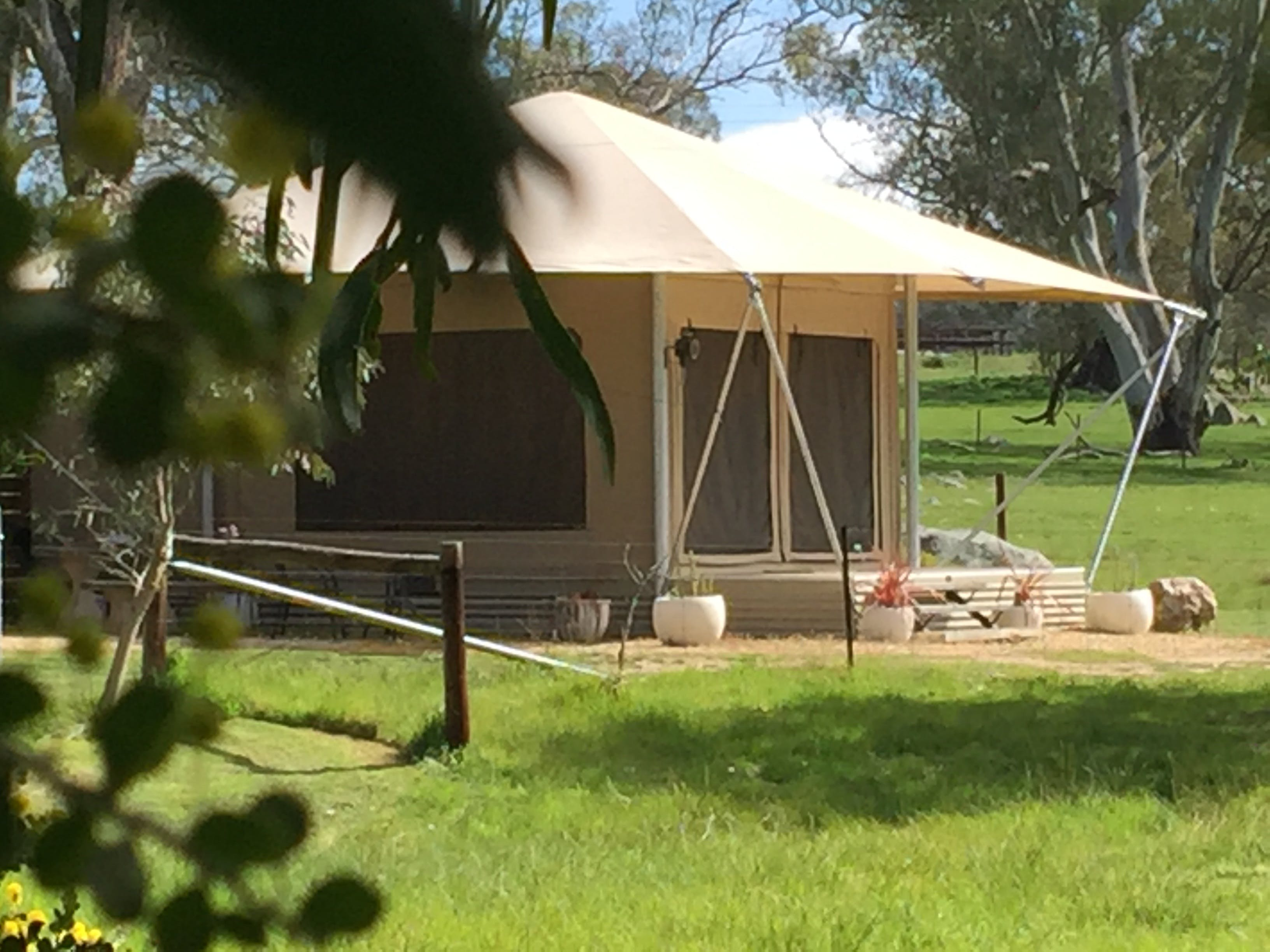 Boongarrie Luxury Tent - Lismore Accommodation