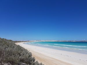 Coffin Bay National Park Campgrounds - Lismore Accommodation
