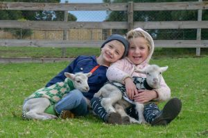 Narnu  Farm Farm stay/ School Camp - Lismore Accommodation
