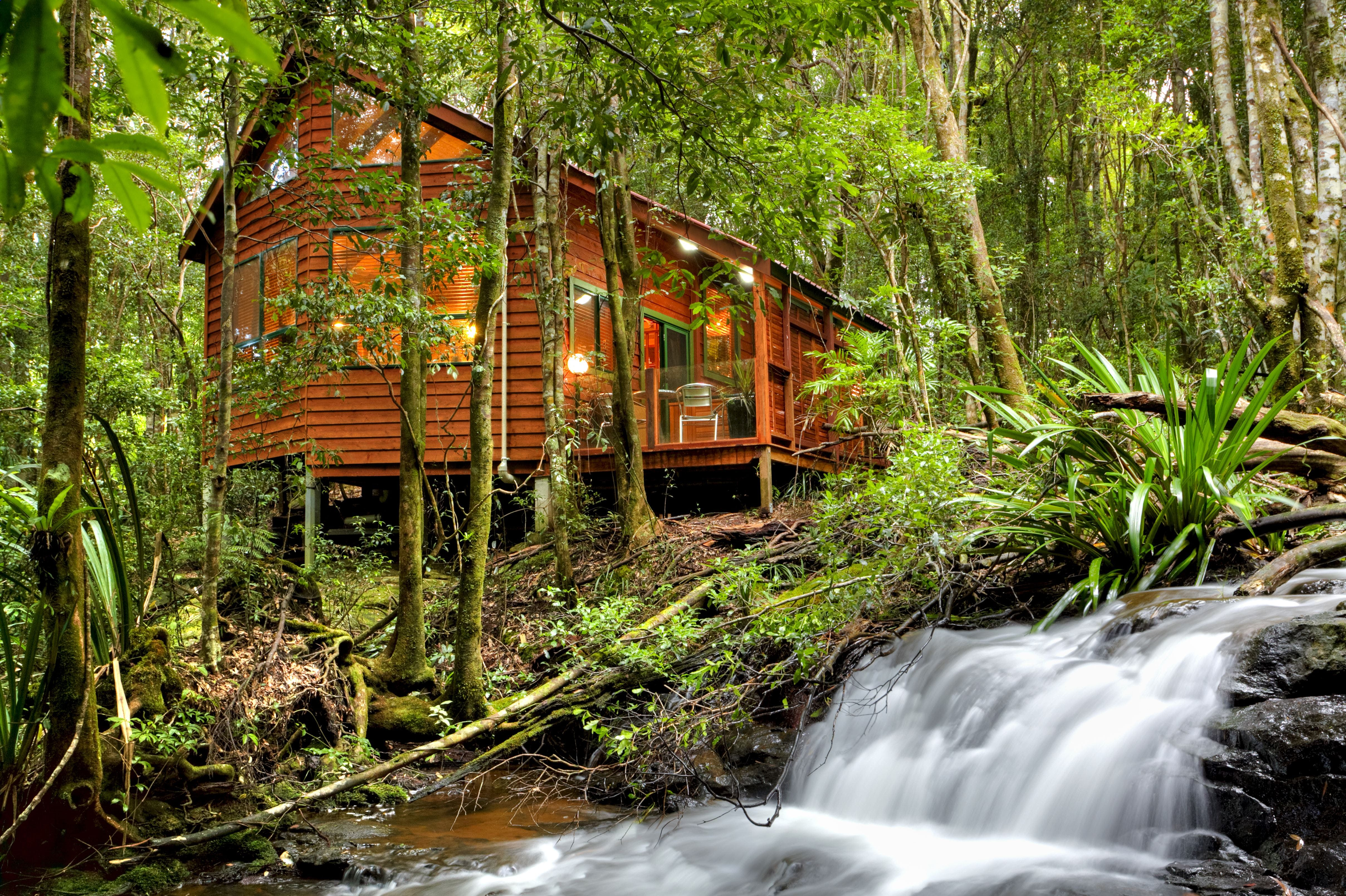 The Mouses House - Rainforest Retreat - Lismore Accommodation