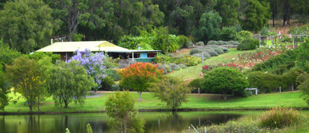 Pemberton Lavender and Berry Farm Cafe and Cottages - Lismore Accommodation