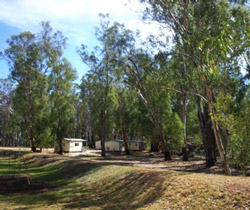 Balranald Caravan Park - Lismore Accommodation