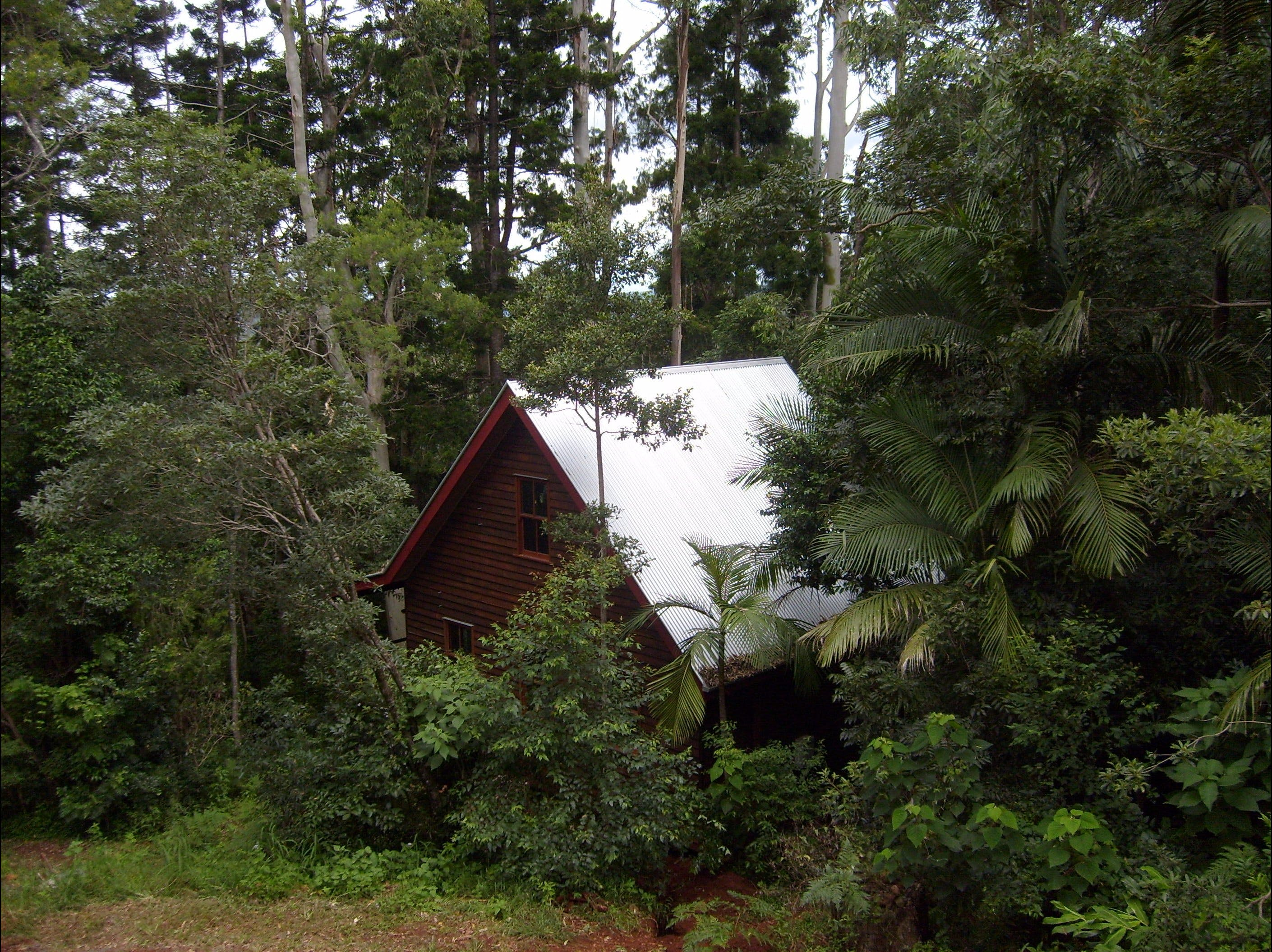 Turkeys Nest Rainforest Cottages Mt Glorious - Lismore Accommodation