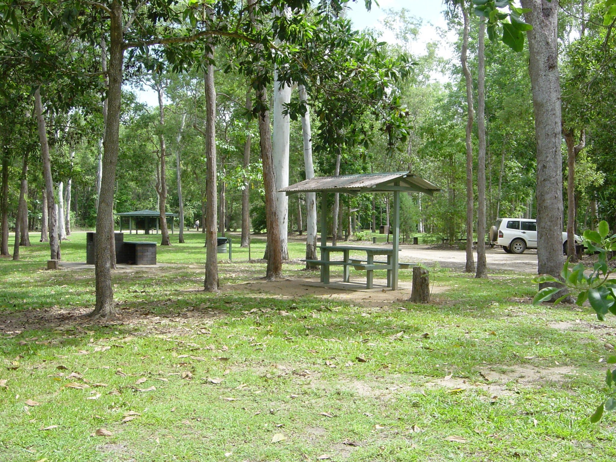 Broadwater camping area Abergowrie State Forest - Lismore Accommodation