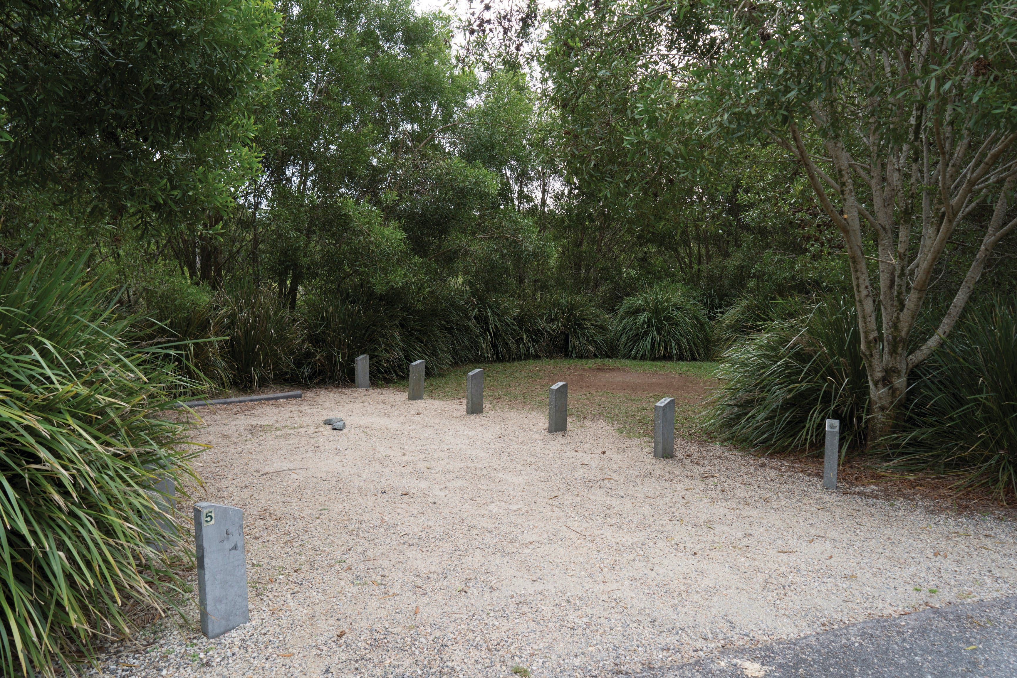 Springbrook National Park camping - Lismore Accommodation