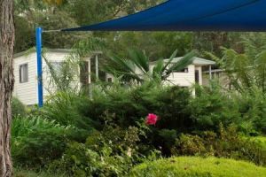 Healesville Tourist Park - Lismore Accommodation