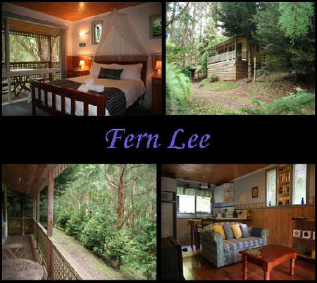 Hill N Dale Farm Cottages - Lismore Accommodation