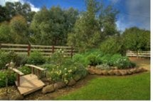 Peppermint Springs Retreat & Day Spa - Lismore Accommodation